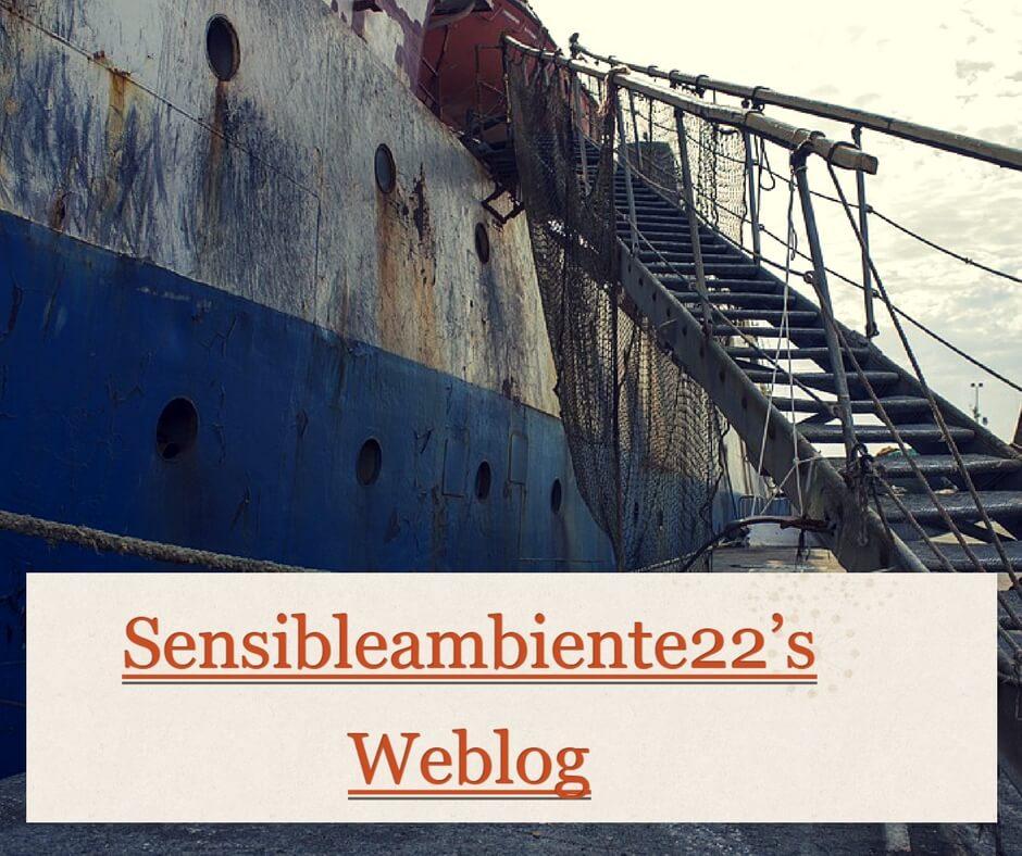 Sesibleambiente22, un blog con esencia poética