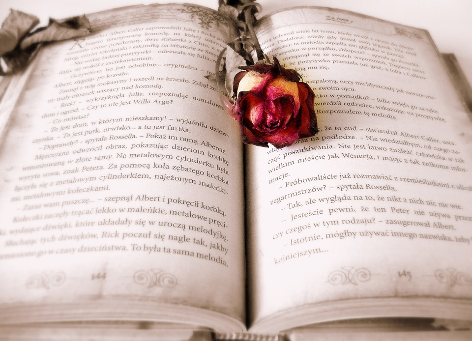 La novela del S. XIX y la Oratoria